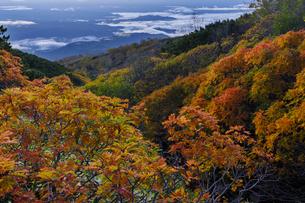 木曽・御嶽山の紅葉の写真素材 [FYI04851566]