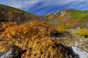 木曽・御嶽山の紅葉の写真素材 [FYI04851569]
