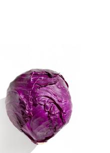 レッドキャベツ 紫キャベツの写真素材 [FYI04851575]
