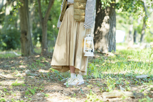 明るい森を散策する若い女性の写真素材 [FYI04851680]