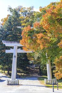 長野県  諏訪大社・上社前宮の写真素材 [FYI04852466]