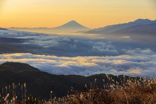 長野県 高ボッチ高原より富士山を望むの写真素材 [FYI04852567]