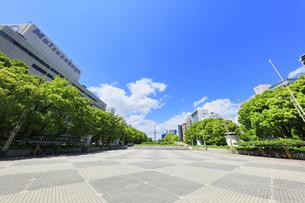 名古屋市 久屋大通公園(100メートル道路)に名古屋テレビ塔の写真素材 [FYI04852620]