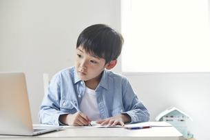 ノートパソコンで勉強する男の子の写真素材 [FYI04852667]