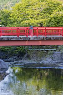 修善寺温泉 新緑に映える渡月橋の写真素材 [FYI04853021]