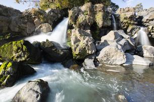 黄瀬川の流れる鮎壺の滝の写真素材 [FYI04853113]