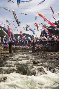 杖立温泉鯉のぼり祭りの写真素材 [FYI04853326]