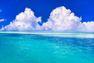 パラオの美しいサンゴ礁の海の写真素材 [FYI04853355]