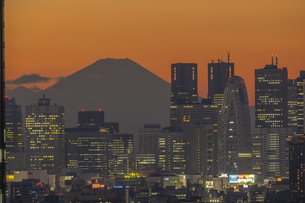 新宿ビル群と富士山マジックアワーの写真素材 [FYI04853370]