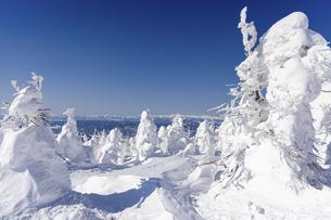 蔵王の樹氷の写真素材 [FYI04853411]