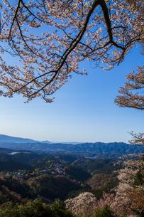 吉野山の桜の写真素材 [FYI04853580]