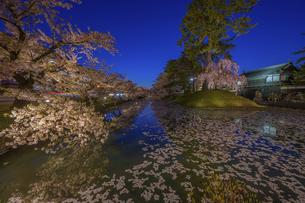 弘前公園の桜 ライトアップの写真素材 [FYI04853583]