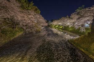 弘前公園の桜 ライトアップの写真素材 [FYI04853595]