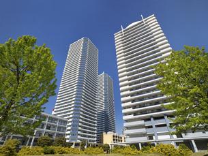 横浜ポートサイド地区の高層マンション街 神奈川県の写真素材 [FYI04853789]