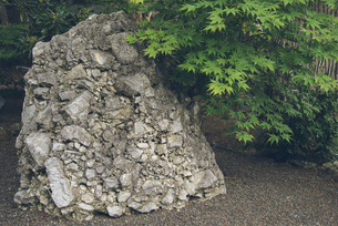 北海道神宮のさざれ石の写真素材 [FYI04854013]