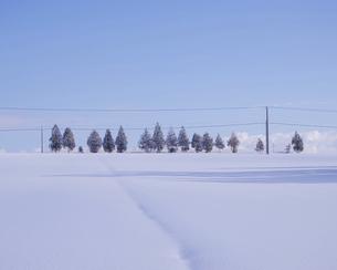 冬の美瑛の写真素材 [FYI04854018]
