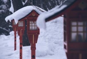 札幌の伏見稲荷神社の写真素材 [FYI04854029]