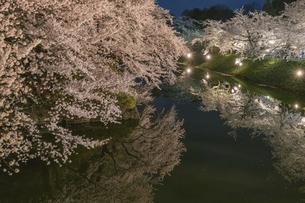 弘前公園の夜桜の写真素材 [FYI04854079]