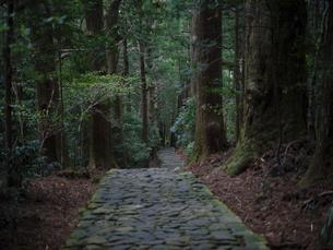 熊野古道の写真素材 [FYI04854168]