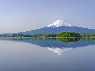 山梨県 初夏の河口湖に映る富士山の写真素材 [FYI04854189]