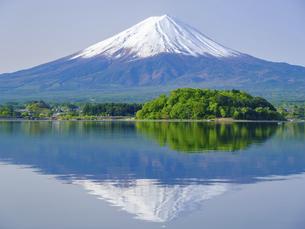 山梨県 初夏の河口湖に映る富士山の写真素材 [FYI04854190]