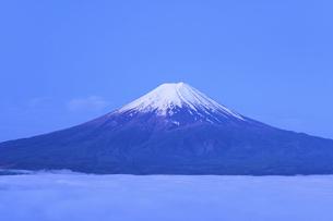 山梨県 雲海に浮かぶ初夏の富士山の写真素材 [FYI04854195]