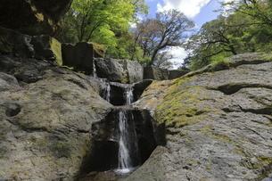 菊池渓谷紅葉ヶ瀬の二段の滝壺の写真素材 [FYI04854275]