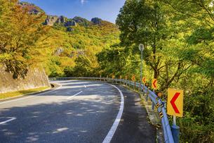 【香川県 小豆島】ブルーラインからみる紅葉した秋の寒霞渓の写真素材 [FYI04854547]