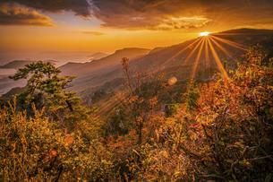 【香川県 小豆島】秋の夕方の寒霞渓の自然風景の写真素材 [FYI04854549]