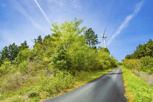 【電気】森林の中の風力発電 再生可能エネルギーの写真素材 [FYI04854728]