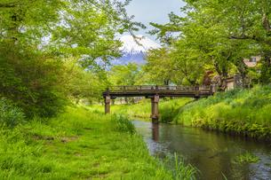 新緑の忍野八海の写真素材 [FYI04854831]