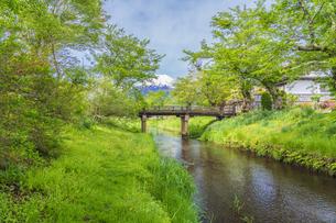 新緑の忍野八海の写真素材 [FYI04854832]