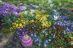 春のやくらいガーデンの写真素材 [FYI04854982]