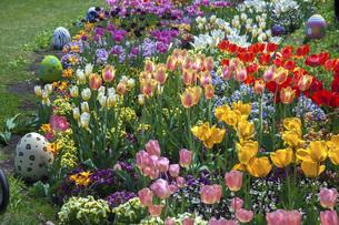 春のやくらいガーデンの写真素材 [FYI04855025]