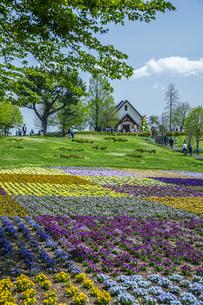 春のやくらいガーデンの写真素材 [FYI04855040]
