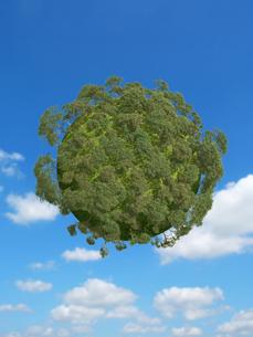 空に浮く樹木の生えた球体のイラスト素材 [FYI04855140]
