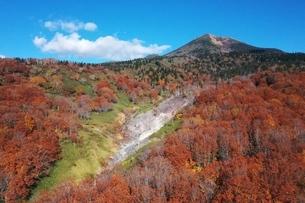 酸ケ湯温泉上空から見る紅葉と八甲田さんの写真素材 [FYI04855283]