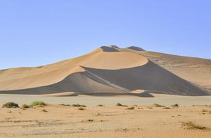 世界最古の砂漠 ナミビアのナミブ砂漠 の写真素材 [FYI04855305]