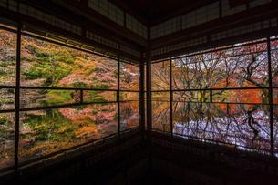 紅葉の京都瑠璃光院の写真素材 [FYI04855312]