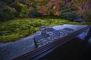 紅葉の瑠璃光院庭園の写真素材 [FYI04855313]