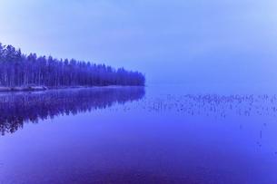 フィンランド ロバニエミの湖畔の写真素材 [FYI04855316]