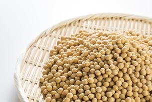笊に盛った大豆の写真素材 [FYI04855377]