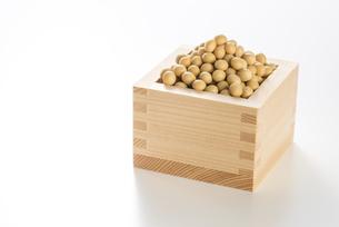 枡にいれた大豆の写真素材 [FYI04855387]