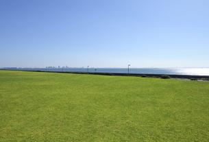 芝生の広場と幕張新都心の写真素材 [FYI04855446]