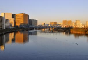 六郷橋から見る川崎駅周辺の朝日に輝く高層ビル群と多摩川の写真素材 [FYI04855453]