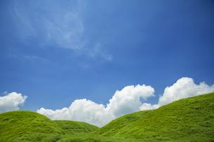 新緑の草原と夏の空の写真素材 [FYI04855592]