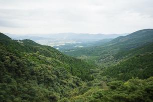 加久藤峠から見る新緑の風景の写真素材 [FYI04855694]
