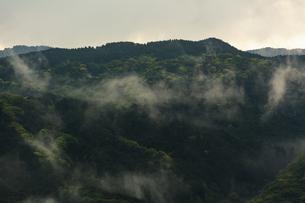 モヤが立ち昇る山の写真素材 [FYI04855713]