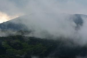 モヤが立ち昇る山の写真素材 [FYI04855714]