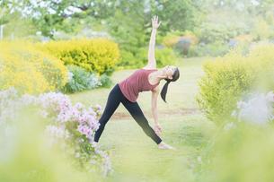 緑あふれる公園でヨガをする若い女性の写真素材 [FYI04855817]